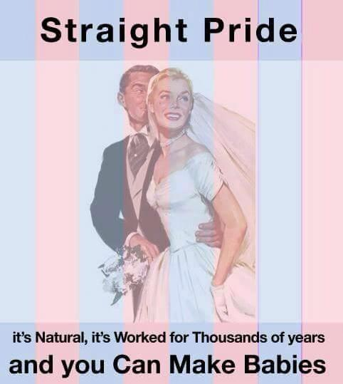 Straight Pride. It's natural. It's worked for thousands of years. And you can make babies!