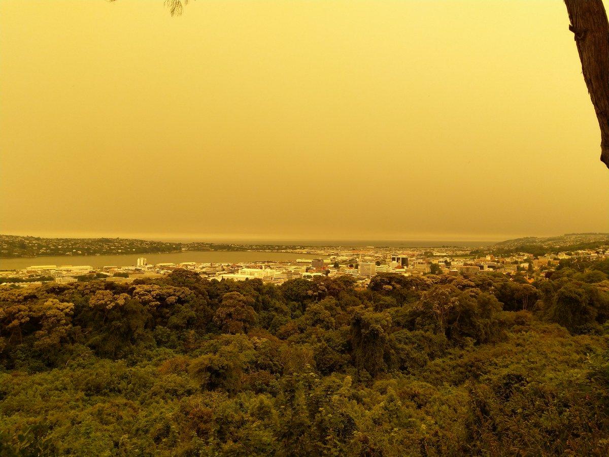 Yellow skies over Dunedin on 1 January 2020 by Twitter user @opetheater