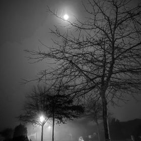 Foggy winter evening with the moon in the sky in Christchurch, New Zealand on 2 June 2020