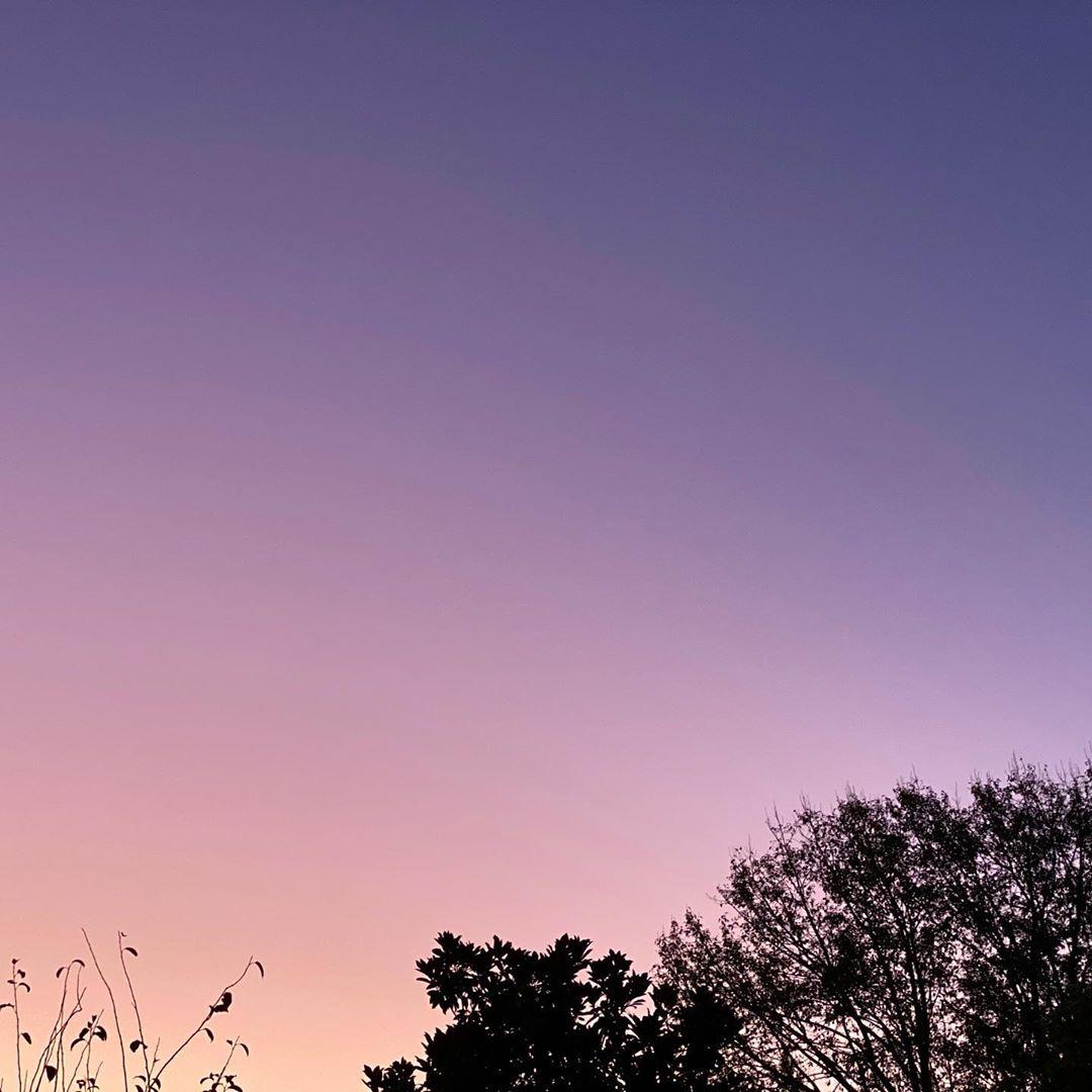 beautiful pastel sunset in autumn 2020