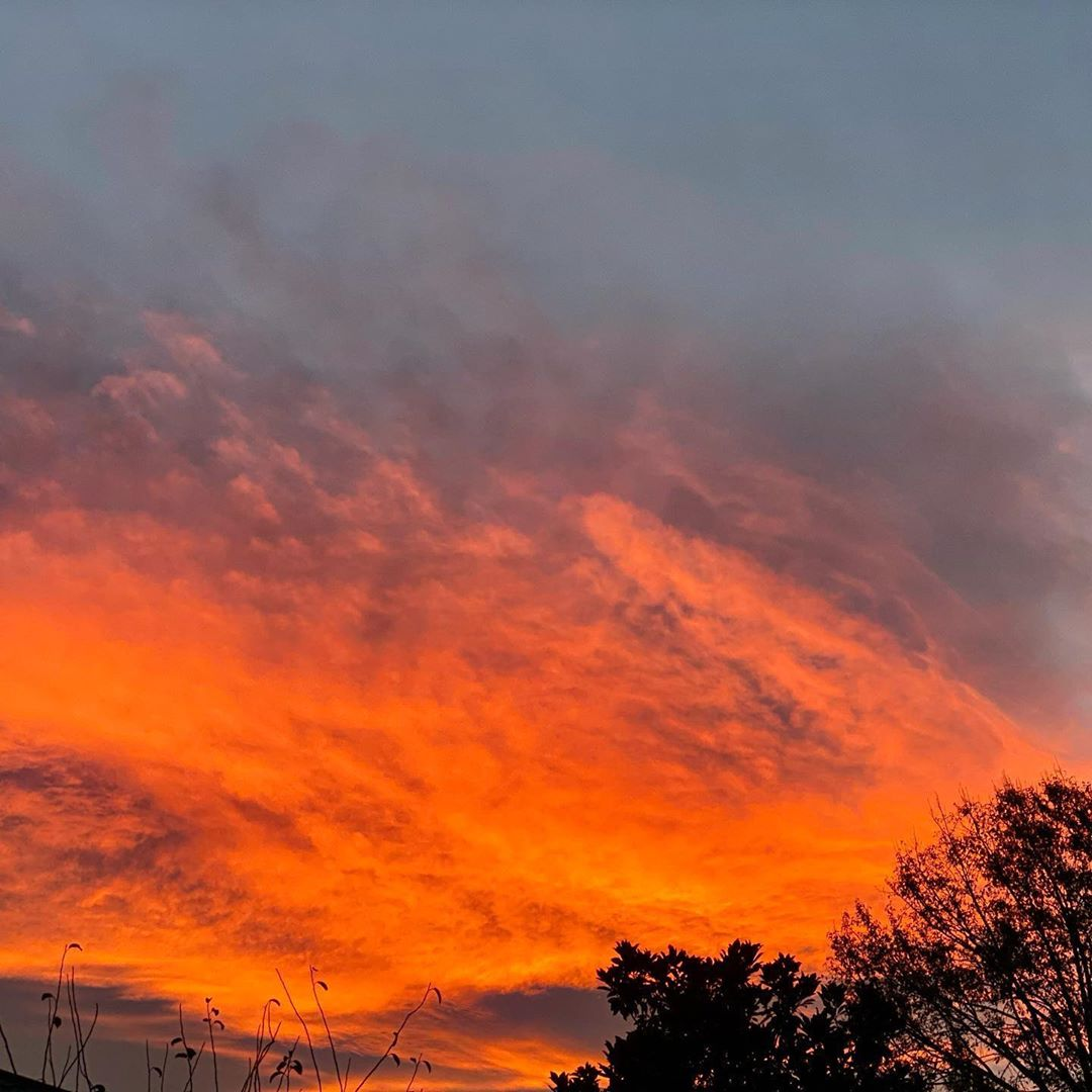 Orange and dark red clouds in the sky with silhouettes of trees at the bottom, beautiful sunset