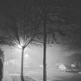Black and white photo of a suburban New Zealand street at night with streetlights casting shadows of trees through the fog