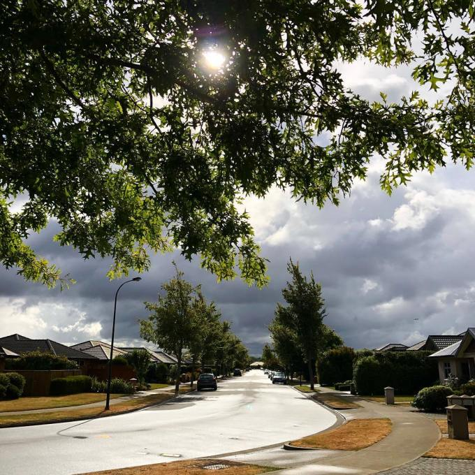 Sun shining through an oak tree in the foreground with wet street leading into the distance and dark rain clouds beyond