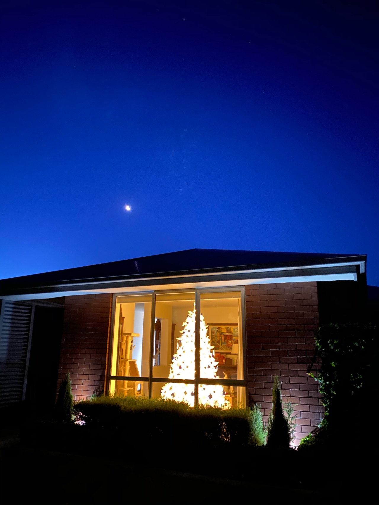 White Christmas tree illuminated in the front window of a house with a twilight darkening blue sky and the moon illuminated in the sky