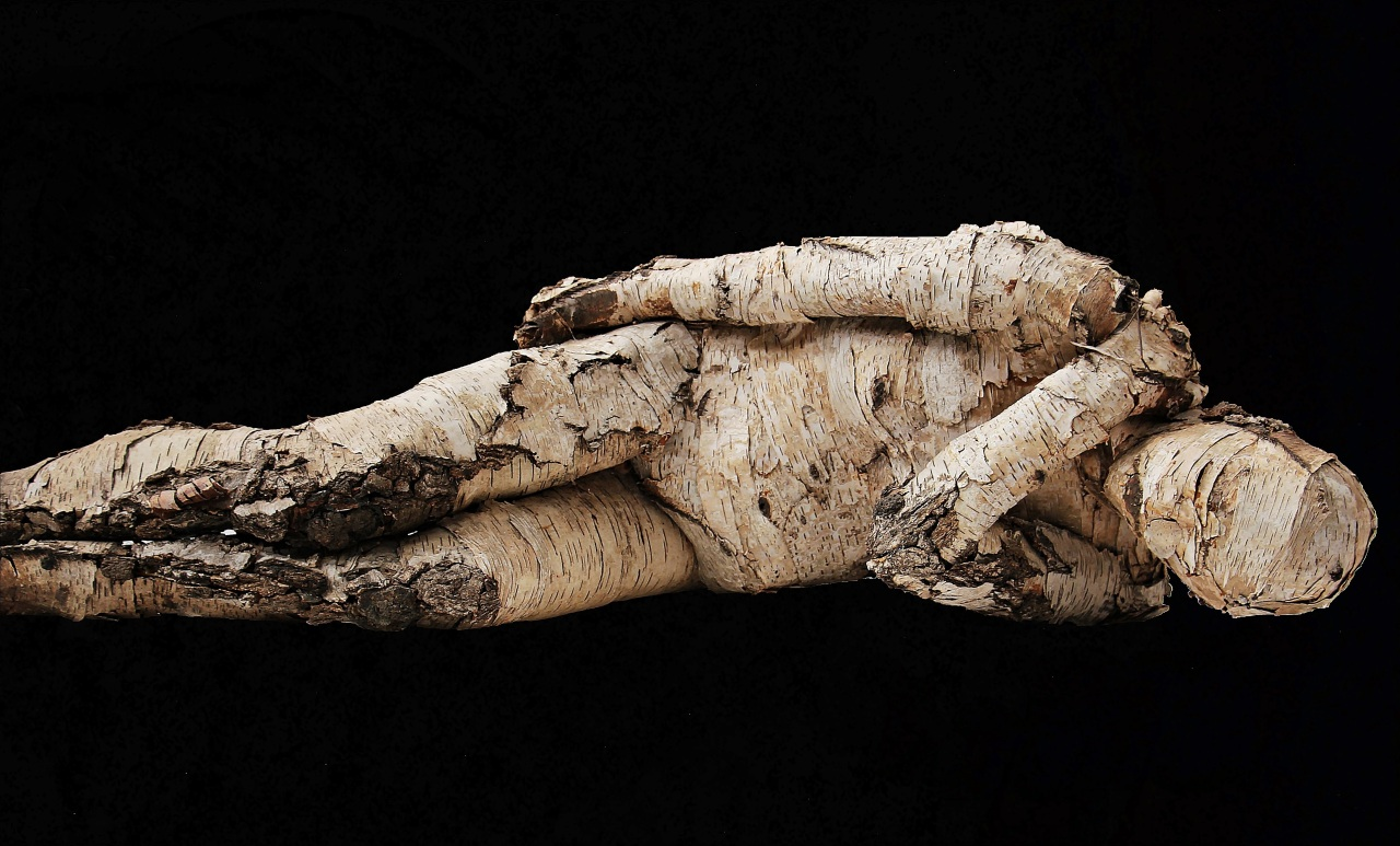 A man covered in birch bark lies on the ground with a black background